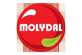 Tratamiento de superficies MOLYDAL